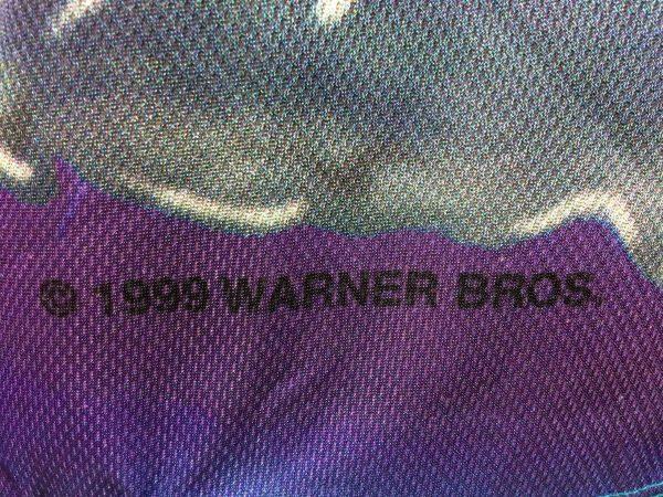 IMG 0186 scaled - TAZ T-Shirt Tune Extreme Summer Vintage 1999
